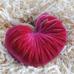 Velvet Heart Pumpkin Giveaway