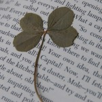 4 leaf clover on page
