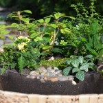 Magical Fairy Container Garden