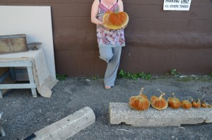 Alley Pumpkins