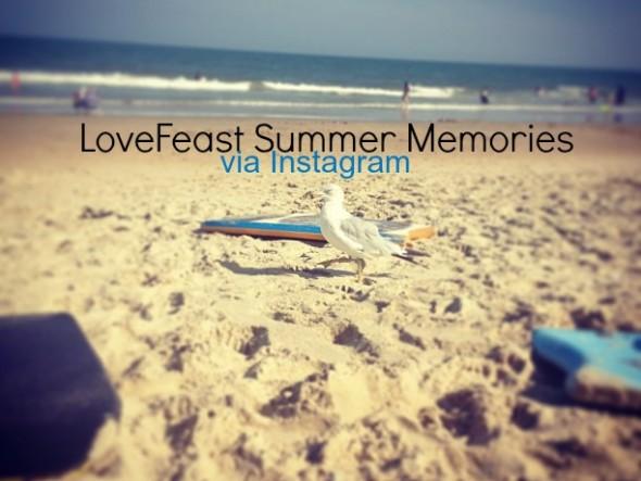 InstagramSeagullPicMonkey