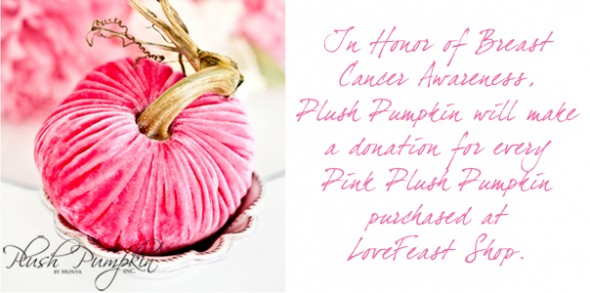 breast-cancer-donation---pink-pumpkin