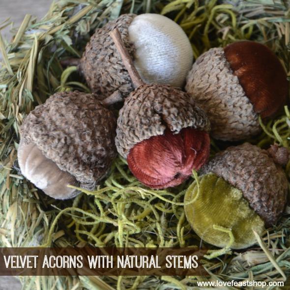Velvet Acorn Nest www.lovefeastshop.com