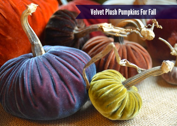Velvet Plush Pumpkins www.lovefeastshop.com