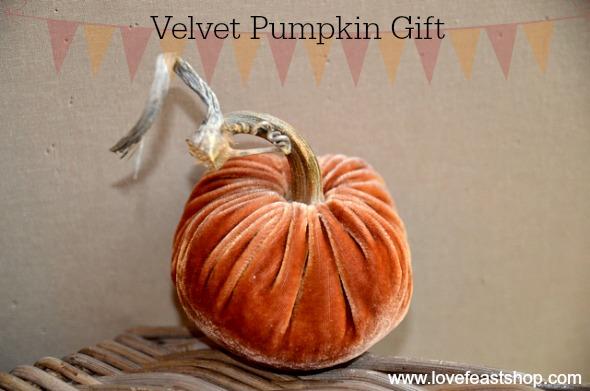 Velvet Pumpkin Gift www.lovefeastshop.com