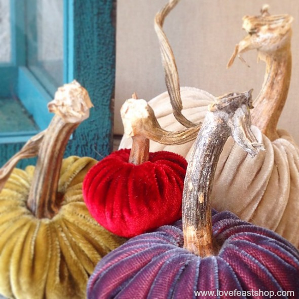 Velvet Pumpkins with real stems www.lovefeastshop.com