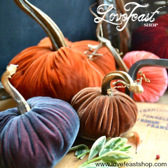 Velvet Pumpkin Perfect gift www.lovefeastshop.com