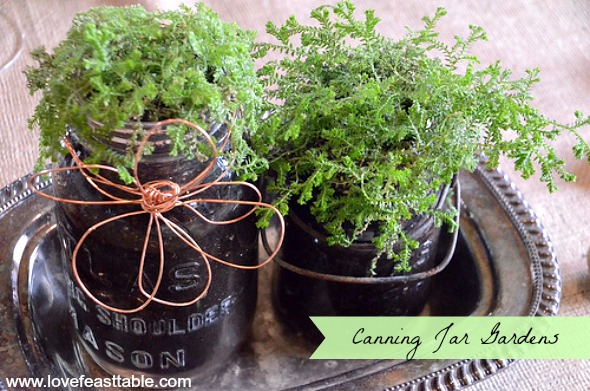 Canning Jar Gardens www.lovefeasttable.com