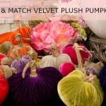 Mix and Match Velvet Plush Pumpkins