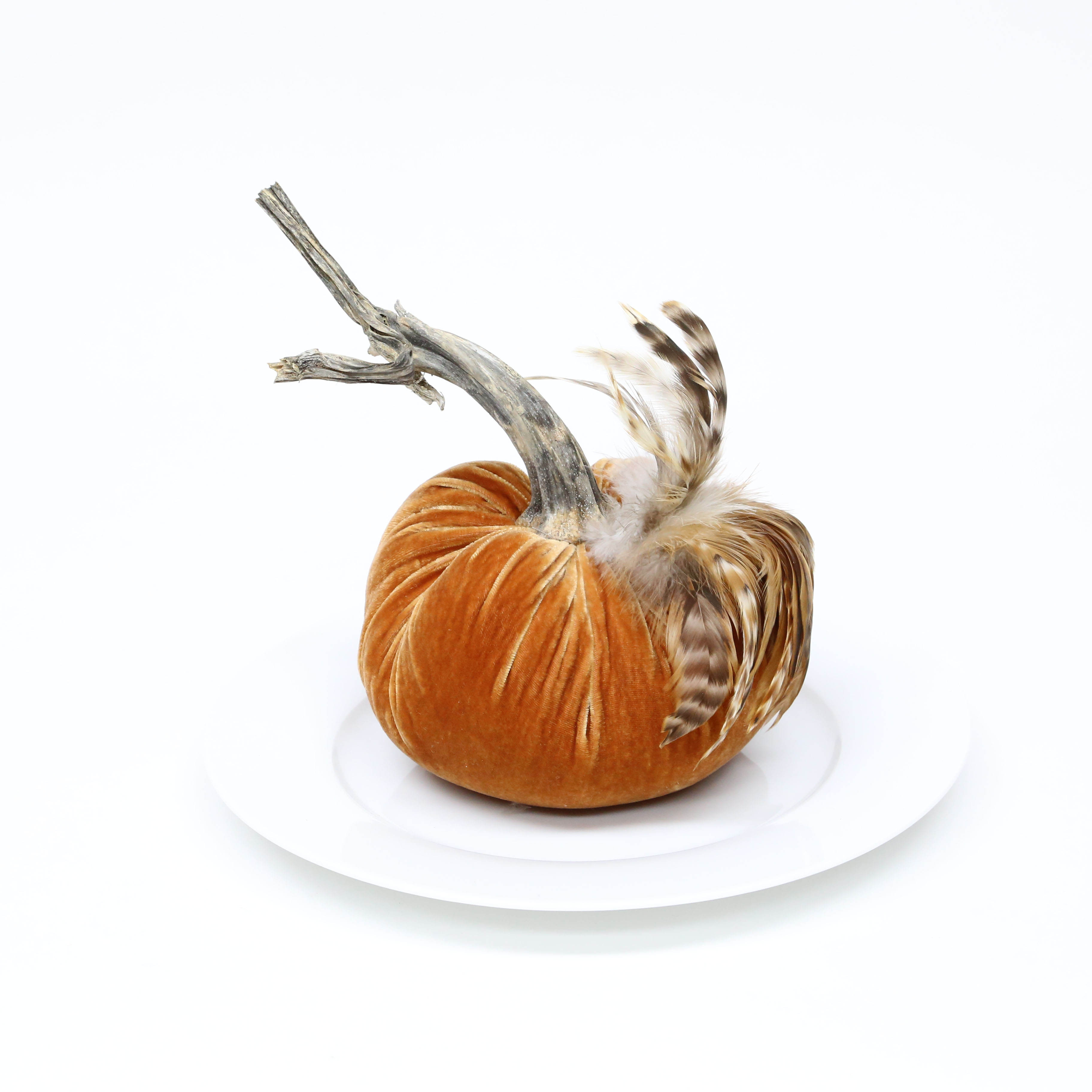 'LoveFeast Shop' from the web at 'http://lovefeasttable.com/blog/wp-content/uploads/2017/10/6-inch-Velvet-Pumpkin-with-Feathers.jpg'
